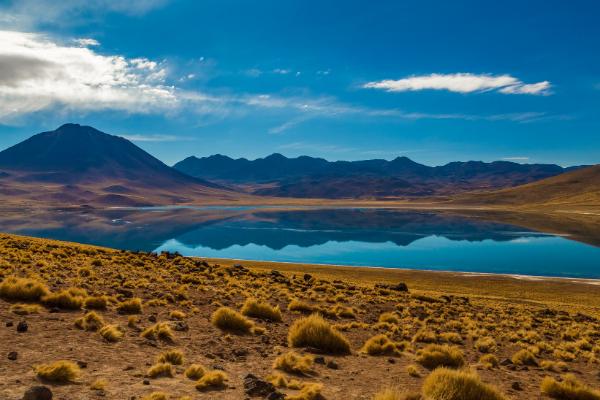 Lagunas Altiplanicas, Tujacto, Mirante Piedras Rojas e Salar Águas Calientes